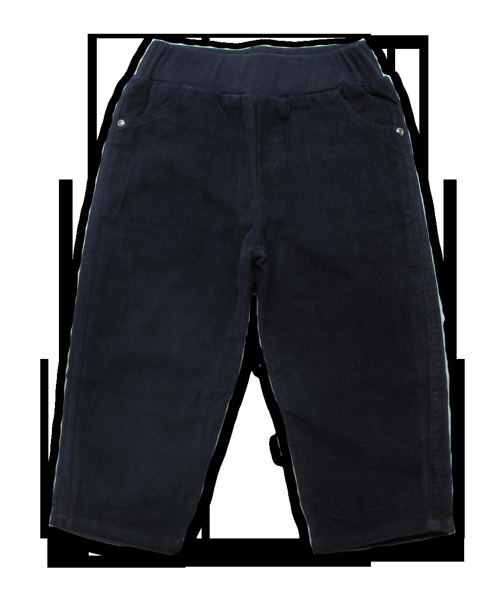 Elastic Waist Cord Pant in Navy